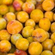Obst aus der Quetschtüte schneidet schlecht ab