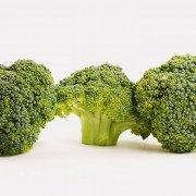 Brokkoli – gesund und köstlich