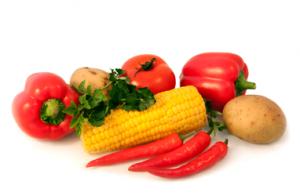 Ernährung Seitenslider Klein
