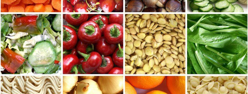 Gesunde Ernährung C. Steinbrecher