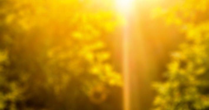 Vitamin-D-Mangel als Verursacher schwerwiegender Erkrankungen