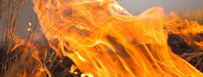 Pyromanie – wenn jemand Feuer und Flamme ist